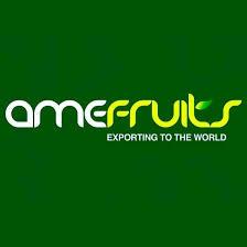 Amefruits